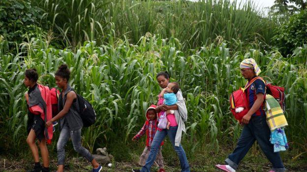 Emigrante, una exfoliación necesaria